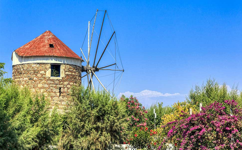 Windmill In Lambi